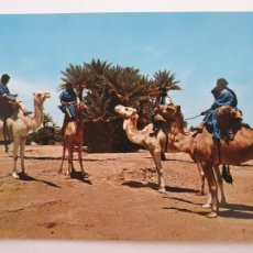 Cartes Postales: SAHARA ESPAÑOL - CARAVANA DE MEHARISTAS - LMX - SHE. Lote 214714757