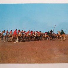 Cartes Postales: SAHARA ESPAÑOL - TROPAS NÓMADAS A CAMELLO - LMX - SHE. Lote 214716311