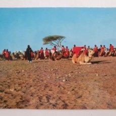Cartes Postales: SAHARA ESPAÑOL - TROPAS NÓMADAS A CAMELLO - LMX - SHE. Lote 214716340