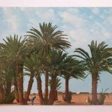 Cartes Postales: SAHARA ESPAÑOL - SMARA - VISTA PARCIAL - LMX - SHE. Lote 214717880