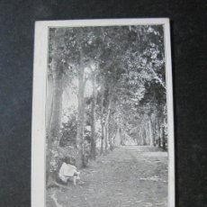 Postales: GUINEA ESPAÑOLA-AVENIDA DEL CEMENTERIO-REVERSO SIN DIVIDIR-POSTAL ANTIGUA-(74.784). Lote 221162398