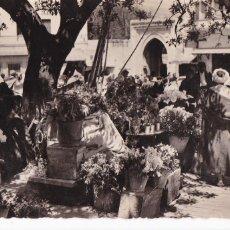 Cartes Postales: MARRUECOS TANGER MERCADO DE LAS FLORES. ED. LA CIGOGNE. CIRCULADA. Lote 223403156