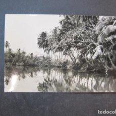 Postales: SANTA ISABEL-FERNANDO POO-COCOTERO-EDICIONES FOTO AUGUSTO-POSTAL ANTIGUA-(77.603). Lote 242356125