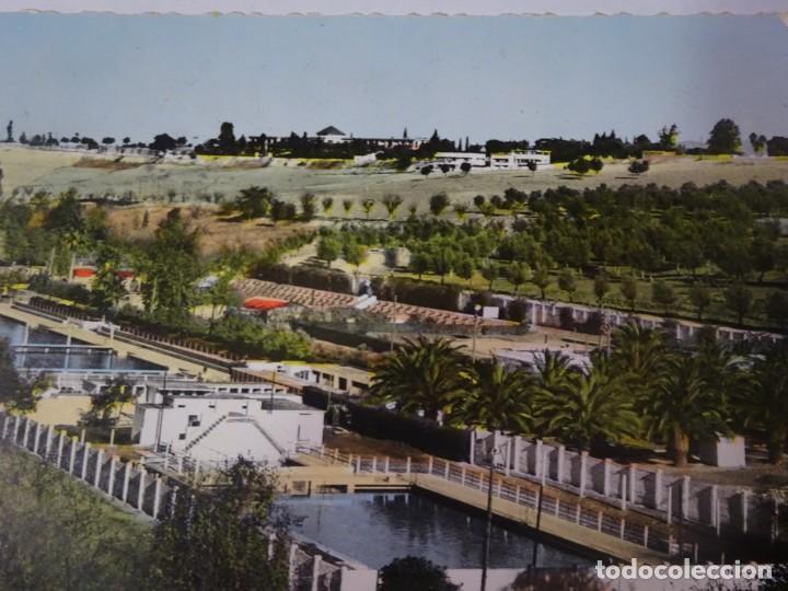 Postales: ANTIGUA POSTAL CPSM , MARRUECOS - MEKNES , VER FOTOS - Foto 4 - 245090250