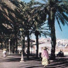 Postales: MARRUECOS,TANGER AVENUE D'EAPAGNE. ED. JEFF Nº 587. ESCRITA. Lote 253309015