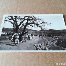 Postales: COSTUMBRES RIFEÑAS ZOCO - EDICIONES FOTO ESPAÑA VILLA ALHUCEMAS. Lote 253854130