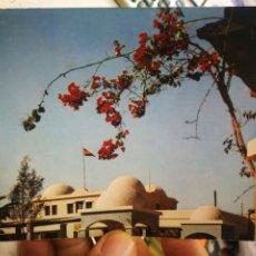 Postales: POSTAL SAHARA ESPAÑOL EL AAIUN GOBIERNO GENERAL DEL SÁHARA N 30040 PHILIPPE MARTIN ESTADO REGULAR. Lote 254213260