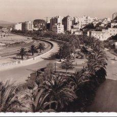 Postales: MARRUECOS, TANGER L'AVENUE D'ESPAGNE. ED. CIE DES ARTS PHOTOMÉCANIQUES Nº 125. SIN CIRCULAR. Lote 277753948