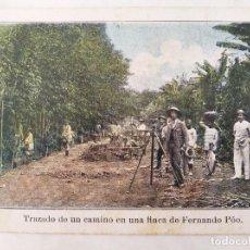 Postales: POSTAL ANTIGUA. TRAZADO DE UN CAMINO EN UNA FINCA DE FERNANDO POO. GUINEA ESPAÑOLA. Lote 294851808