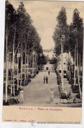 BADAJOZ. PASEO EUCALIPTUS. CLARAMON Y CIA. Nº5. SIN CIRCULAR. (Postales - España - Extremadura Antigua (hasta 1939))