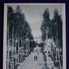 Postales: POSTAL DE BADAJOZ. Nº9 PASEO DE EUCALIPTUS. AÑO 1903. Lote 47370695