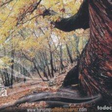 Postales: POSTAL VALLE DEL AMBROZ. CACERES. Lote 95888811
