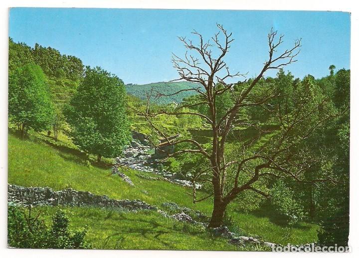 ALDEA NUEVA DE LA VERA - CÁCERES - PAISAJE - Nº10 EDICIONES VISTABELLA (Postales - España - Extremadura Moderna (desde 1940))