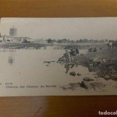 Postales: POSTAL ZAFRA 6. CHARCA DEL CAMPO DE SEVILLA (SIN DIVIDIR). Lote 149721918