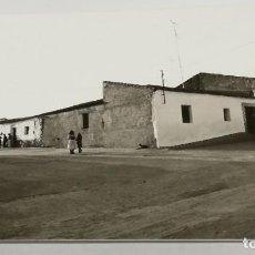 Postales: FOTOGRAFIA DE PALOMAS, BADAJOZ. MIDE 12,5 X 8,7 CMS.. Lote 161081158