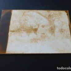 Postales: TRUJILLO CACERES FINCA AZUQUEN DEL HIERRO FAMILIA ORTIZ DE URBINA POSTAL FOTOGRAFICA REVERSO SIN DIV. Lote 163979930