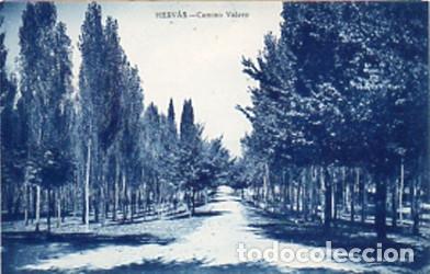 HERVÁS (CÁCERES) - CAMINO VAERO - EDICIÓN LIBRERIA RONCERO - SIN CIRCULAR (Postales - España - Extremadura Antigua (hasta 1939))
