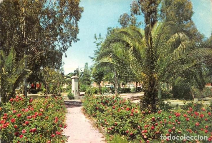 NAVALMORAL DE LA MATA.- PARQUE MUNICIPAL (Postales - España - Extremadura Moderna (desde 1940))