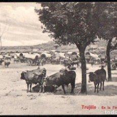 Postales: TRUJILLO (CACERES) - EN LA FERIA - EDITOR A. DURAN TRUJILLO - Nº 29. Lote 191615140