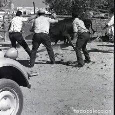 Postales: NEGATIVO ESPAÑA CÁCERES PLASENCIA FERIA GANADO 1970 KODAK 55MM GRAN FORMATO NEGATIVE SPAIN PHOTO. Lote 199943037