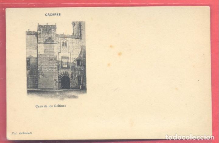 CACERES, CASA DE LOS GOLFINES, FOT. ECHALUCE.PAPELERIA ALCOYANA, REVERSO SIN DIVIDIR, S/C, VER FOTOS (Postales - España - Extremadura Antigua (hasta 1939))