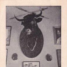 Postales: MUSEO TAURINO DE MAIZFLOR, ÚLTIMO TORO ESTOQUEADO POR D. MANUEL BIENVENIDA. ACEUCHAL (BADAJOZ) FIRMA. Lote 236113015