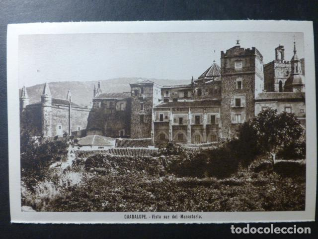 Postales: GUADALUPE CACERES - Foto 1 - 236194530