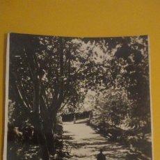 Postales: ANTIGUA POSTAL FOTOGRAFICA.UN JARDIN DEL BALNEARIO.ALANGE BADAJOZ. 1959. Lote 236652290