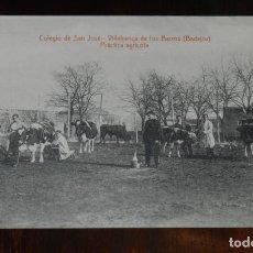 Postales: POSTAL DE VILLAFRANCA DE LOS BARROS, BADAJOZ, COLEGIO DE SAN JOSE, PRACTICA AGRICOLA, FOTO L. SAUS. Lote 241839840