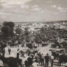 Cartes Postales: POSTAL - FOTOGRAFICA - FERIA DE GANADO - CACERES - AÑO 1950 - ESCRITA FRANQUEADA Y CIRCULADA -. Lote 266605648