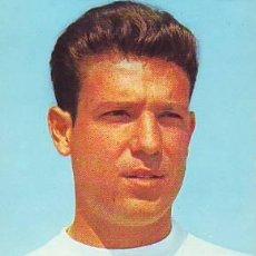 Coleccionismo deportivo: REAL MADRID: POSTAL DE GROSSO. AÑOS 60. Lote 26535157