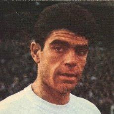 Coleccionismo deportivo: POSTAL DEL JUGADOR DE FUTBOL DEL REAL MADRID SANCHIS. Lote 7929540