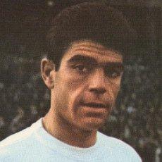 Coleccionismo deportivo: POSTAL DEL JUGADOR DE FUTBOL DEL REAL MADRID SANCHIS. Lote 12987309