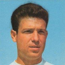 Coleccionismo deportivo: POSTAL DEL JUGADOR DE FUTBOL DEL REAL MADRID GROSSO. Lote 7929764