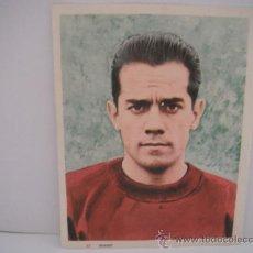 Coleccionismo deportivo: FOTO COLOREADA EN PAPEL DE SUAREZ (SECC.ESPAÑOLA) AÑO 1964.. Lote 33796503
