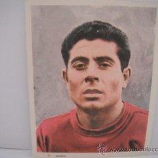 Coleccionismo deportivo: FOTO COLOREADA EN PAPEL DE OLIVELLA (SECC.ESPAÑOLA) AÑO 1964.. Lote 33796534