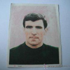 Coleccionismo deportivo: FOTO COLOREADA EN PAPEL DE IRIBAR (SECC.ESPAÑOLA) AÑO 1964.. Lote 36909278