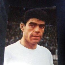 Coleccionismo deportivo: SANCHIS - JUGADOR REAL MADRID - POSTAL - SIN CIRCULAR -. Lote 41078391