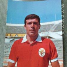 Coleccionismo deportivo: ANTIGUA POSTAL FUTBOL - BENFICA HUMBERTO COELHO. Lote 205735726