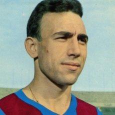 Coleccionismo deportivo: FC BARCELONA - RIFE. Lote 206336426