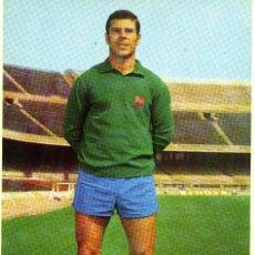 Coleccionismo deportivo: FC BARCELONA - REINA. Lote 206349706