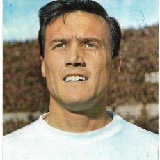 Coleccionismo deportivo: VALENCIA CF: POSTAL DE ROBERTO. AÑOS 60. Lote 218938413