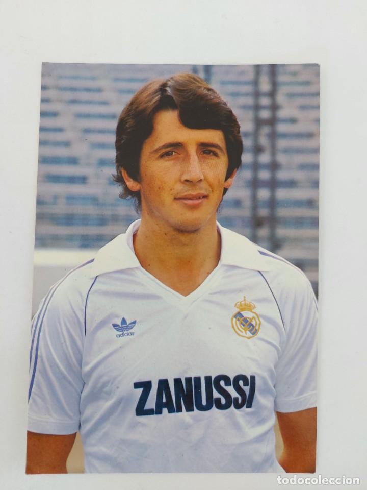 ANTIGUA POSTAL DE SALGUERO JUGADOR DEL REAL MADRID - 1982 - PUBLICIDAD DE ZANUSSI EN LA CAMISETA - F (Coleccionismo Deportivo - Postales de Deportes - Fútbol)