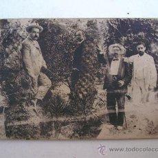 Postales: FOTO POSTAL DE 4 HOMBRES EN JARDIN (MANCHADA , CON ROTO Y REVERSO CON SUCIEDAD, SIN CIRCULAR). Lote 20338748