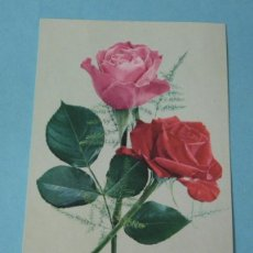 Postales: POSTAL ROSAS. Lote 41056655