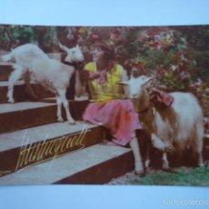 Postales: POSTAL CHICA JUGANDO CON CABRAS. ED. MISTINGUETT. FOTO UTUDJIAN PARIS. SIN ESCRIBIR.. Lote 58699714