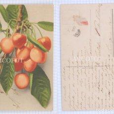 Postales: POSTAL - LA DE LA FOTO. Lote 194396862