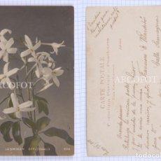 Postales: POSTAL FECHADA EN 1908 - LA DE LA FOTO. Lote 194397021