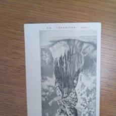 Postales: ANTIGUA POSTAL BELLEZAS 1900 UNIÓN POSTAL UNIVERSAL. Lote 194512916