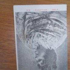 Postales: ANTIGUA POSTAL BELLEZAS 1900 UNIÓN POSTAL UNIVERSAL. Lote 194513108